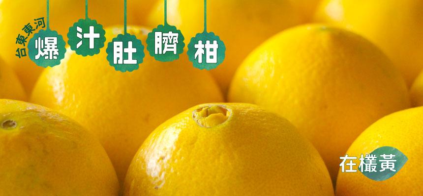【台東】東河在欉黃爆汁肚臍柑7斤