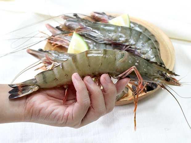 野生大尾海草蝦6P