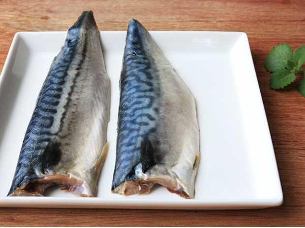 鯖魚片(薄鹽)