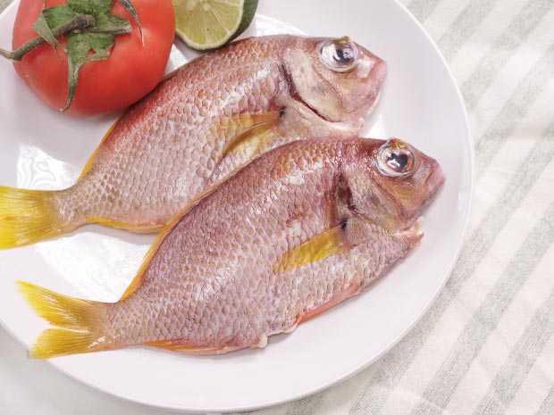 野生國光魚