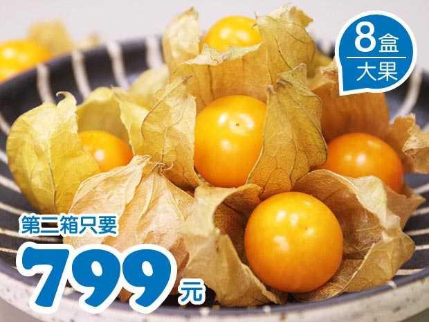 台南日本種黃金莓