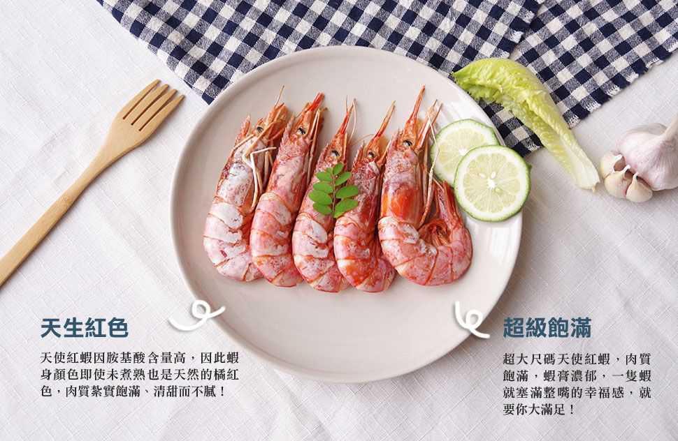 天使紅蝦介紹