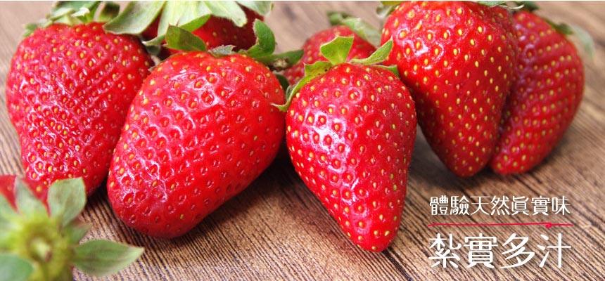 有機香水草莓