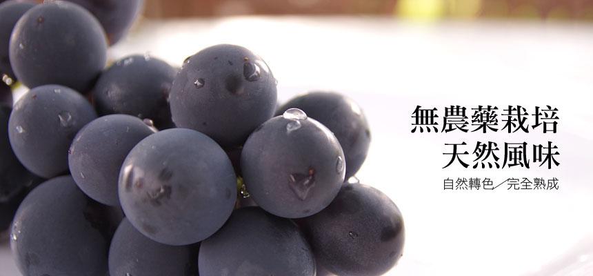 大村奈米葡萄
